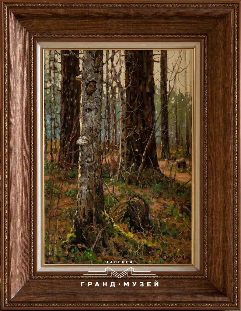 Лес в Тимирязево
