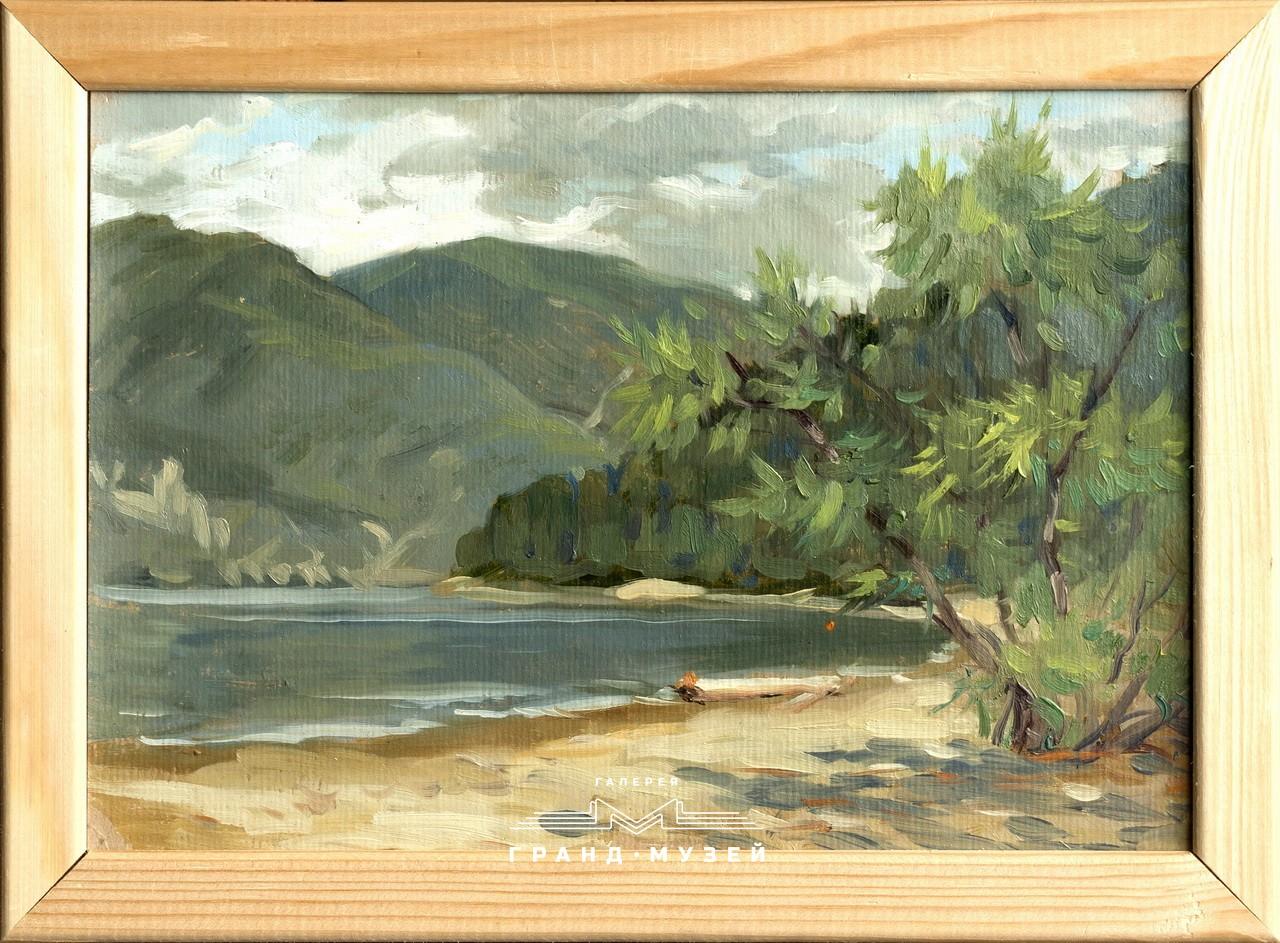 Ива на берегу Телецкого озера. Алтай